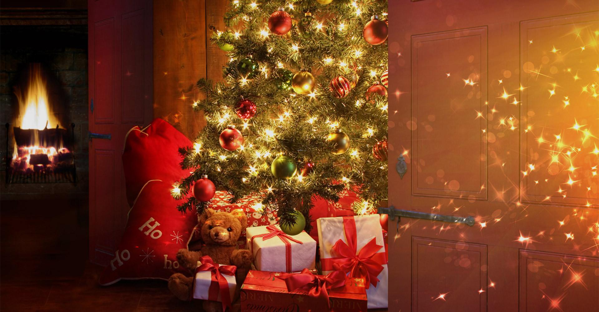 De mooiste Nordmann Excellent kerstboom in Amsterdam vanaf € 15,-
