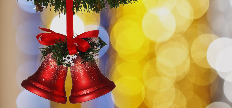 Veelgestelde vragen over Nordmann Excellent kerstbomen in Amsterdam