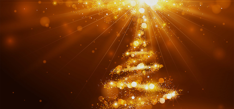 Kerstbomen voor bedrijven in Amsterdam